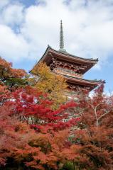 08-Kyoto_20131123_0050