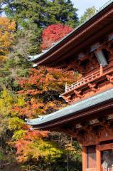 09-Koyasan_20131124_0023